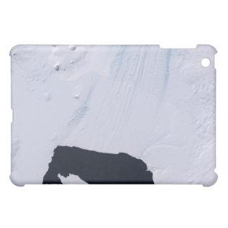 Pine Island Glacier iPad Mini Case