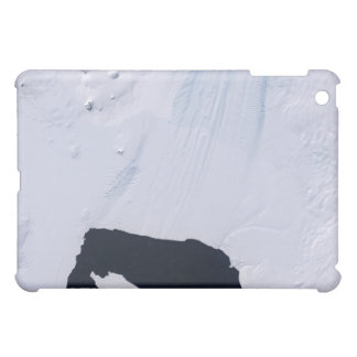 Pine Island Glacier iPad Mini Cover