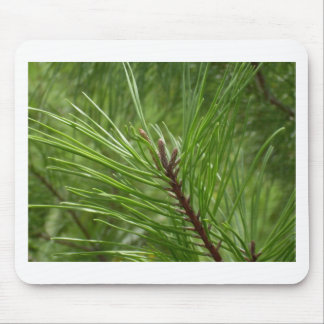 Pine needle mouse pad