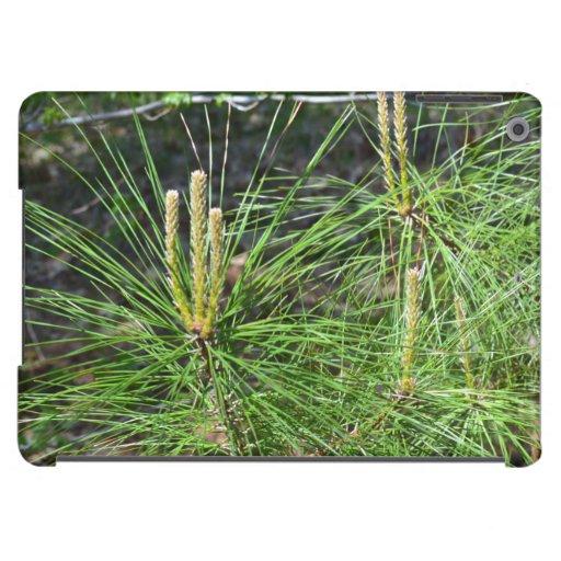 Pine Needles iPad Air Cases