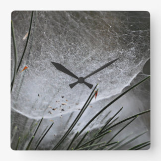 Pine Needles Spider Web Nature Art Square Wall Clock