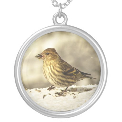 Pine Siskin Round Pendant Necklace