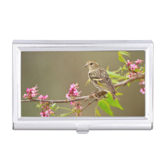 Pine Siskin (Spinus Pinus) Adult Perched Business Card Holder