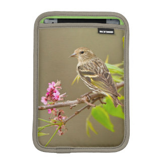 Pine Siskin (Spinus Pinus) Adult Perched iPad Mini Sleeve