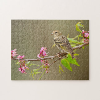 Pine Siskin (Spinus Pinus) Adult Perched Jigsaw Puzzle