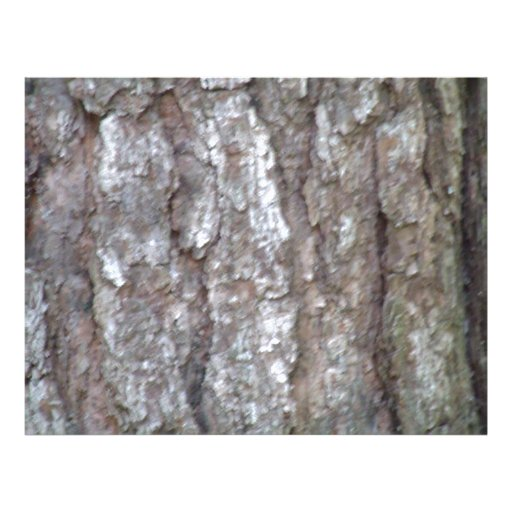 Pine Tree Bark Camo Natural Wood Camouflage Nature Personalized Flyer