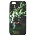 Pine Tree Branch iPhone 5C Case