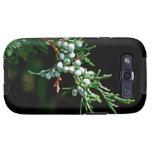 Pine Tree Branch Samsung Galaxy S3 Cover