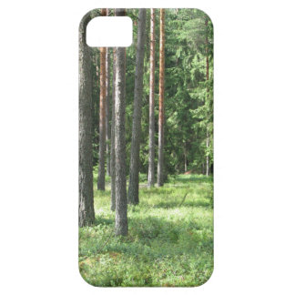 pine tree forest iPhone 5 cases