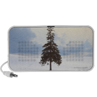 Pine tree Hokkaido Mp3 Speakers