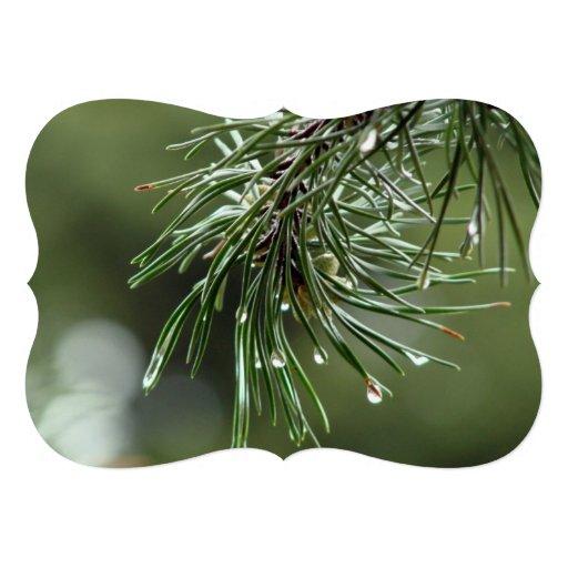 Pine Tree Invitation