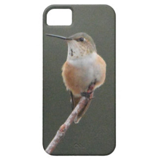 Pine Warbler Bird Nature Barely There iPhone 5 Case