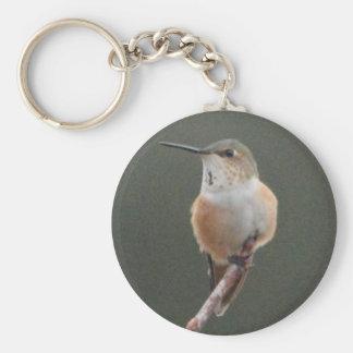 Pine Warbler Bird Nature Key Chains
