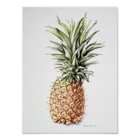 Pineapple 1997 poster