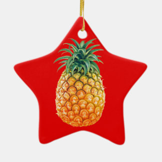 PINEAPPLE CERAMIC STAR DECORATION
