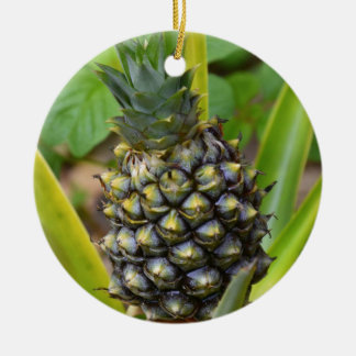 Pineapple Christmas Ornament