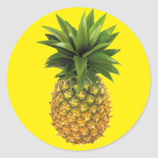 Pineapple Classic Round Sticker
