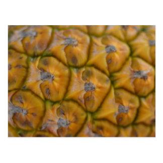Pineapple close up postcard
