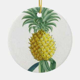Pineapple engraved by Johann Jakob Haid (1704-67) Christmas Ornament