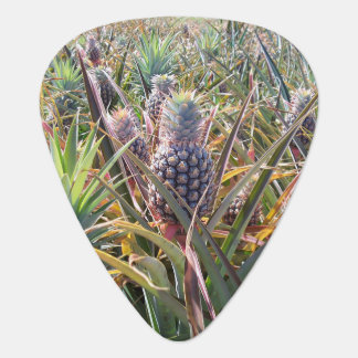 Pineapple Field Guitar Pick