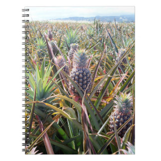 Pineapple Field Notebook