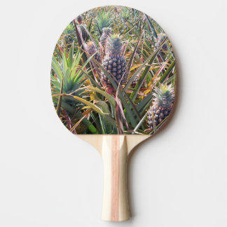 Pineapple Field Ping Pong Paddle