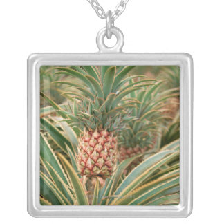 Pineapple Field Silver Plated Necklace