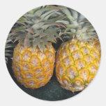 Pineapple Paradise Round Sticker
