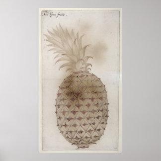 Pineapple, Poster