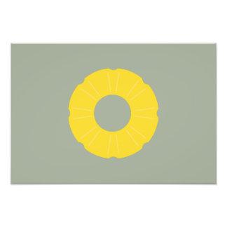 pineapple slice photograph