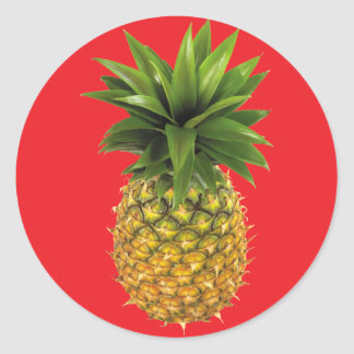 round pineapple stickers. Black Bedroom Furniture Sets. Home Design Ideas
