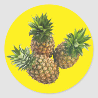 Pineapples Classic Round Sticker