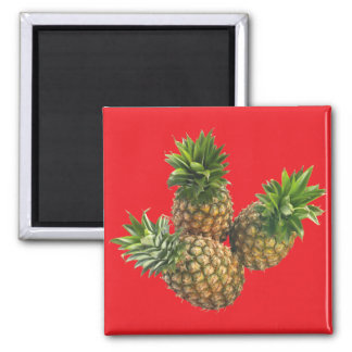 Pineapples Magnet