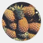 Pineapples, Tulum, Mexico Round Stickers