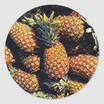 Pineapples, Tulum, Mexico Stickers