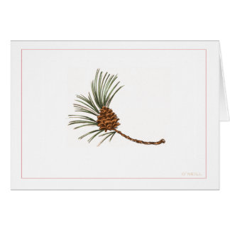 """Pinecone"" by Gerry O'Neill Card"