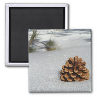 Pinecone on the Snow Magnet