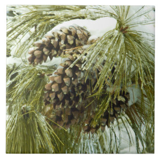 Pinecones in Snow Tile