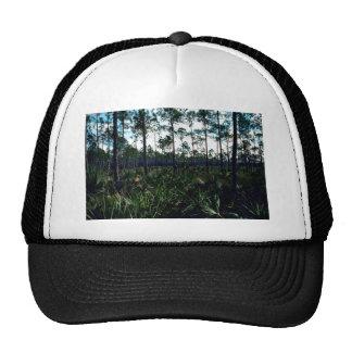 Pinelands Cap