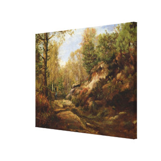 Pines & Birch Trees or The Forest of Canvas Print