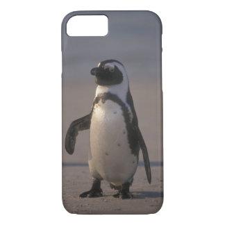 Pinguim africano (demersus do Spheniscus) ou Jacka iPhone 8/7 Case