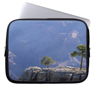 Pinion pine on canyon edge , Grand Canyon Laptop Sleeve