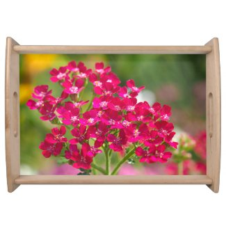 Pink Achillea Flowers Serving Tray