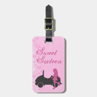 Pink and Black Sweet Sixteen Luggage Tag