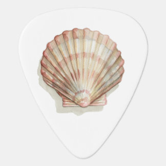 Pink and Cream Seashell Guitar Pick