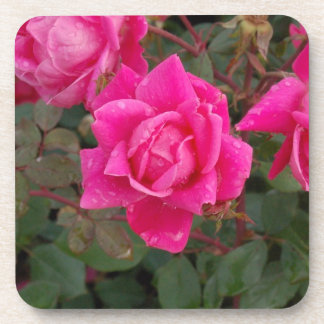 pink and fading Zaz JPG Drink Coaster