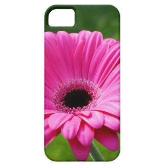 Pink and Green Gerbera Daisy iPhone 5 Case