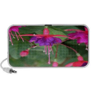 Pink and Purple Fuschia Flowers Travel Speakers