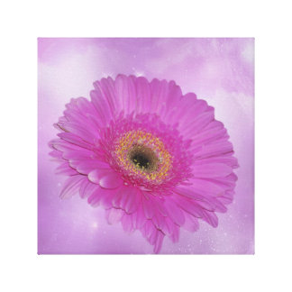 Pink and purple Gerber daisy Gallery Wrap Canvas