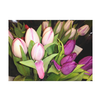 Pink And Purple Tulips Canvas Print